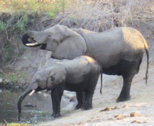 Botswana, Africa