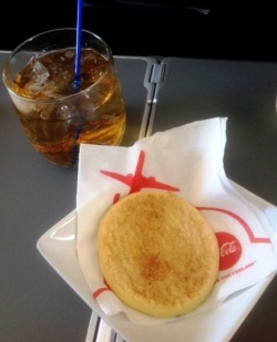 American Airlines Snickerdoodle