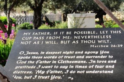 Biblical quote in the garden of Gethsemane