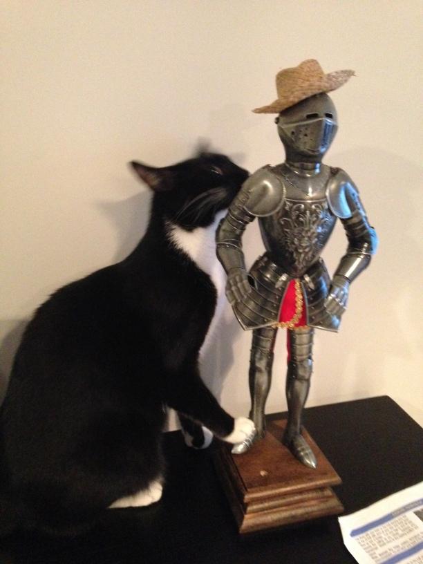 Billysky cat makes a friend