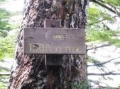 Deer Mountain Trail Mile 1 marker