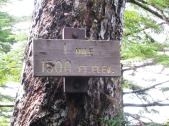 Deer Mountain Trail Mile 1 marker