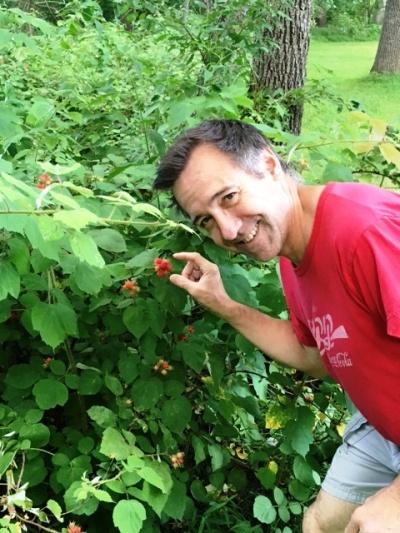 Rasberry bush