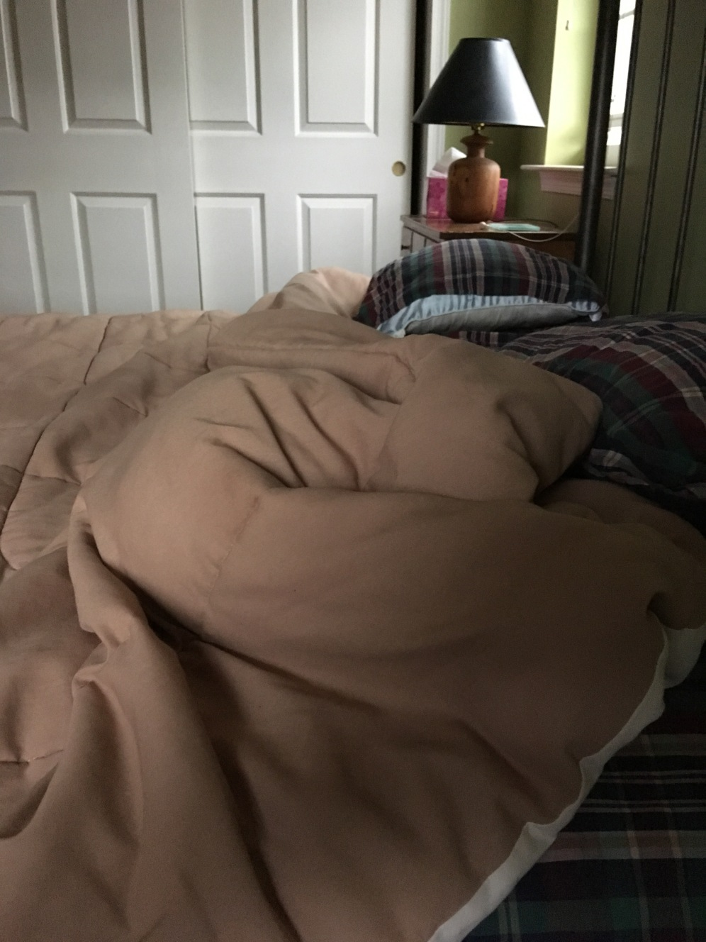 I see the lump in the messed up blanket