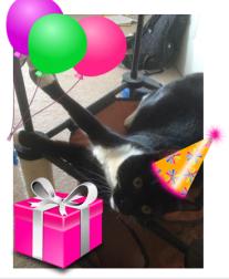 billysky birthday