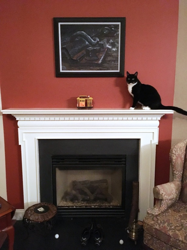 cat on mantel