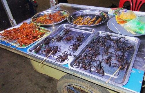 cambodian edible spiders