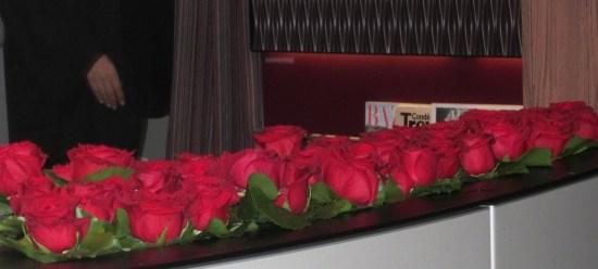 Qatar a380 roses