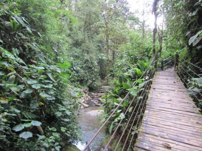 hiking to Mindo Cascades 2