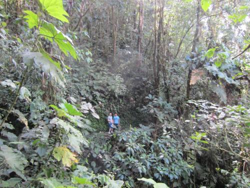 Hiking to mindo cascades