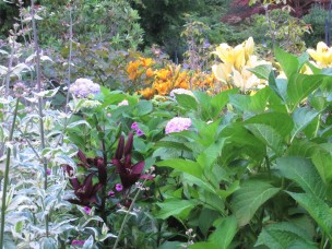 butchart garden 5