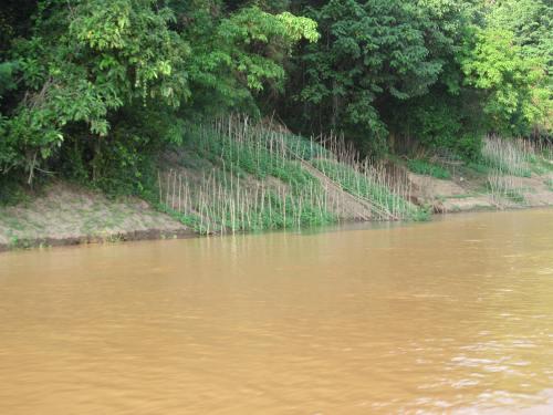 Laos Mekong Garden